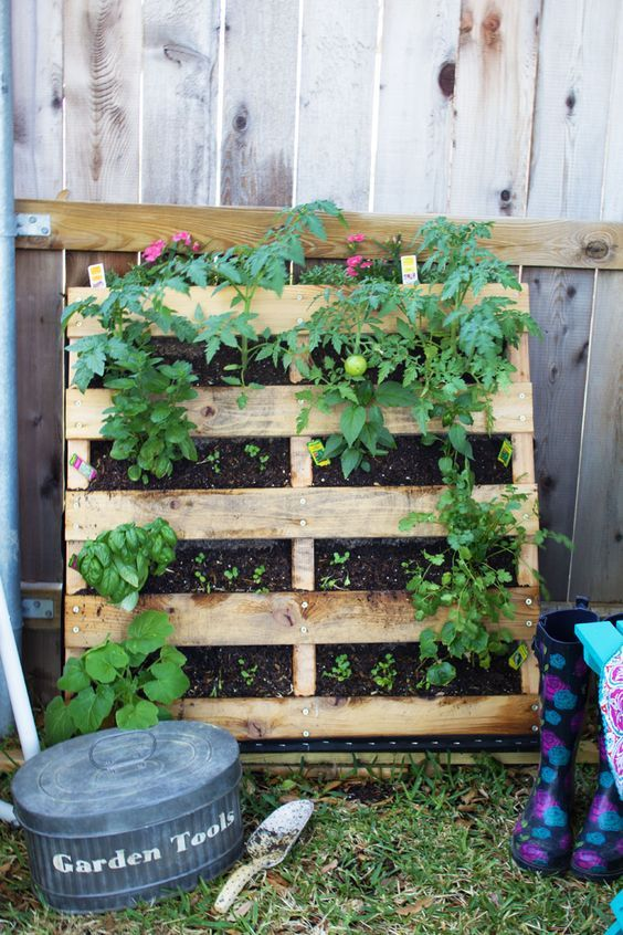 vertical pallet planter for upcycled garden