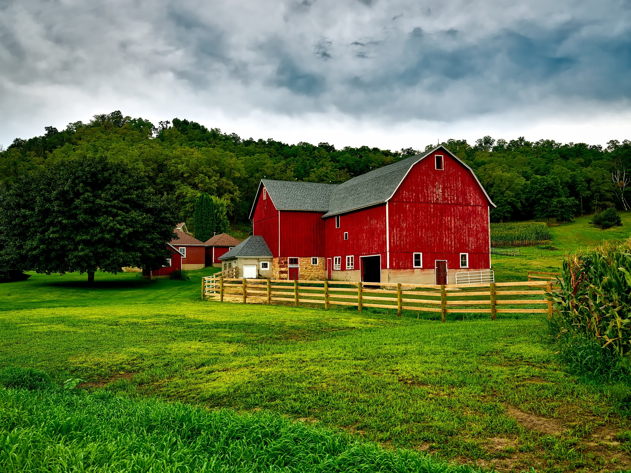 How to Start a Small Farm? – A Guide for the Beginners