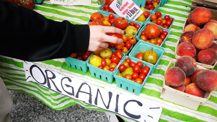 Organic Farming – Pros And Cons You Should Know.
