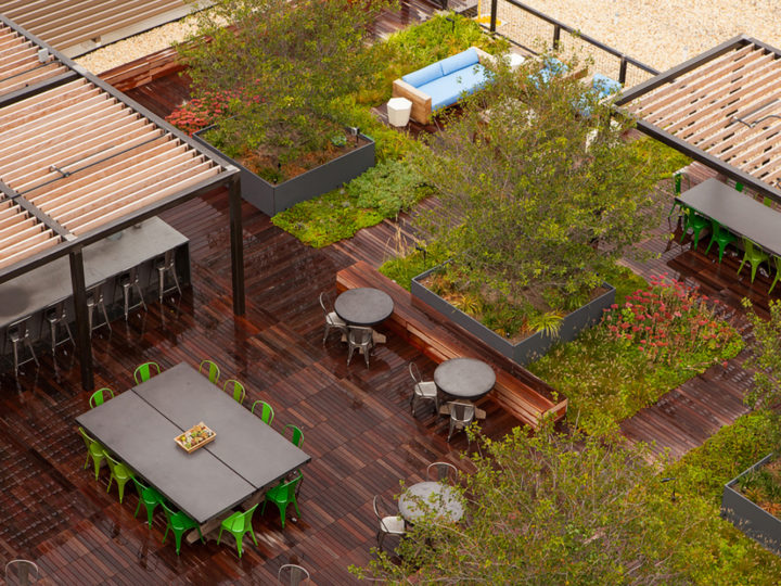 The Complete Guide To Create A Rooftop Garden