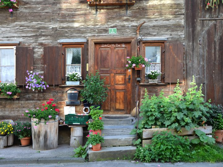 Front Door Plants For A Fanciable Home Entrance