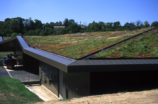 Is Green Roof System Really Good?