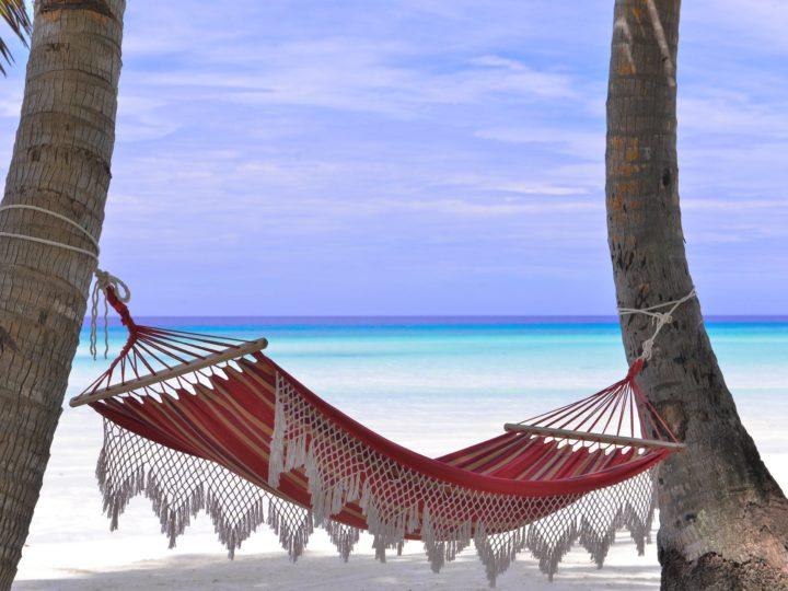 Best Hammock Chair For A Relaxing Evening