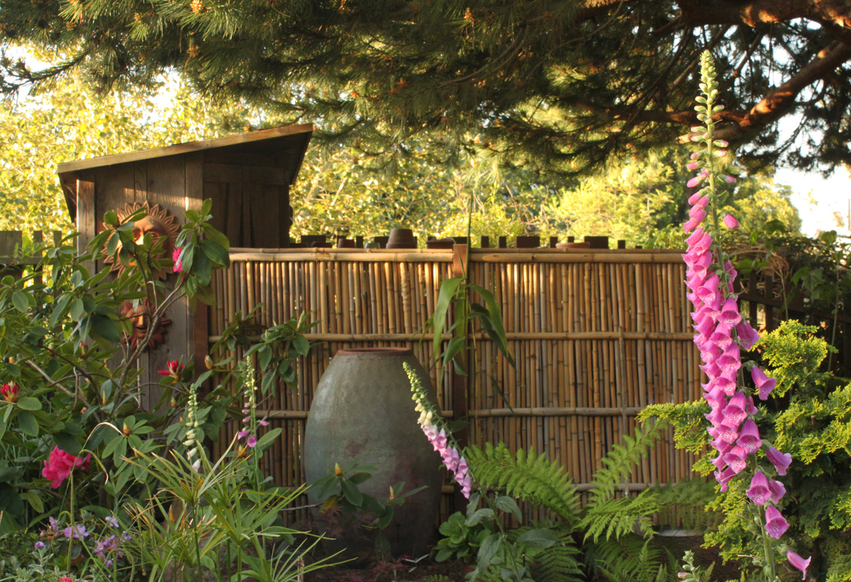 fascinating bamboo fencing ideas to try