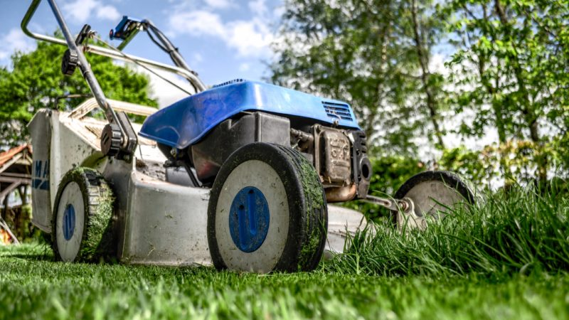 Best Mulching Blades For A Neat and Healthy Lawn