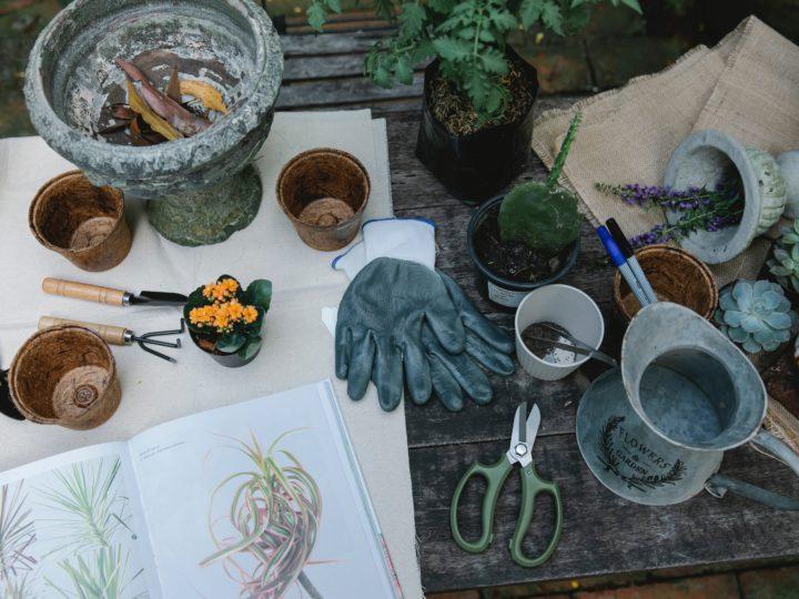 Rustic Garden Decor Ideas to Inspire You